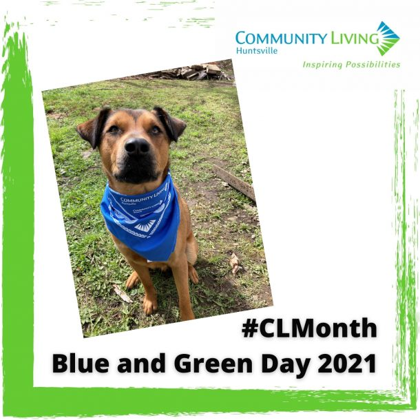 Image shows a medium sized tan-coloured dog wearing a blue Community Living Huntsville bandana loosely positioned around its neck.